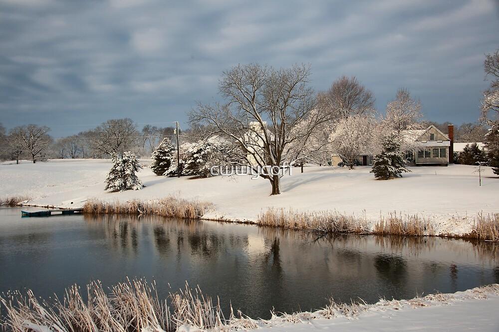 An Iowa Farmstead in Winter by cwwycoff