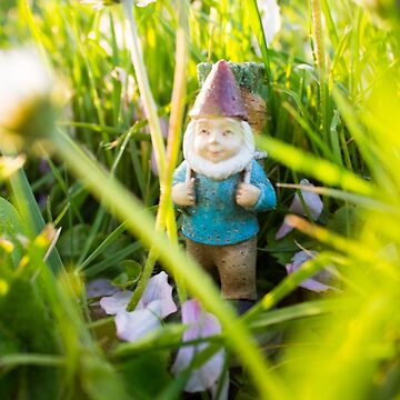Tall Grasses Roy by DustysGnomes
