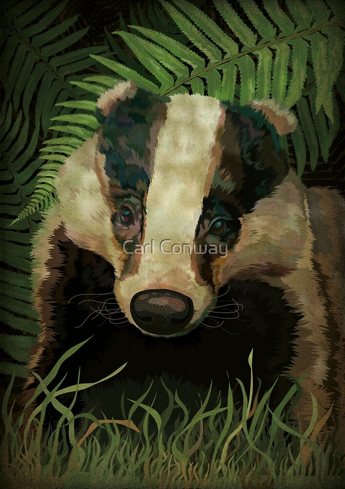 Mr. Badger by Carl Conway