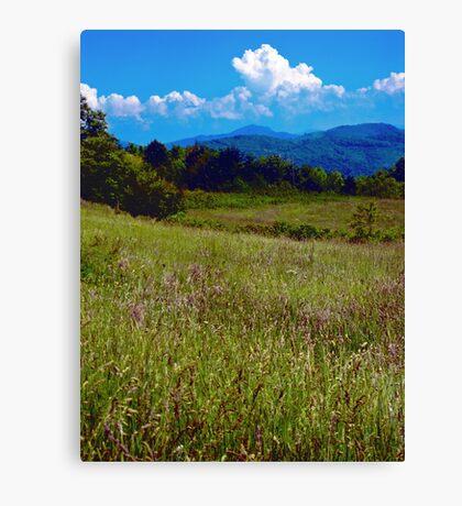 Appalachian View Canvas Print