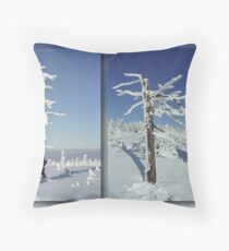 A diamond-dust day at the Smrk mountain (diptych) Throw Pillow