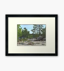 Memories Of Pine River Framed Print