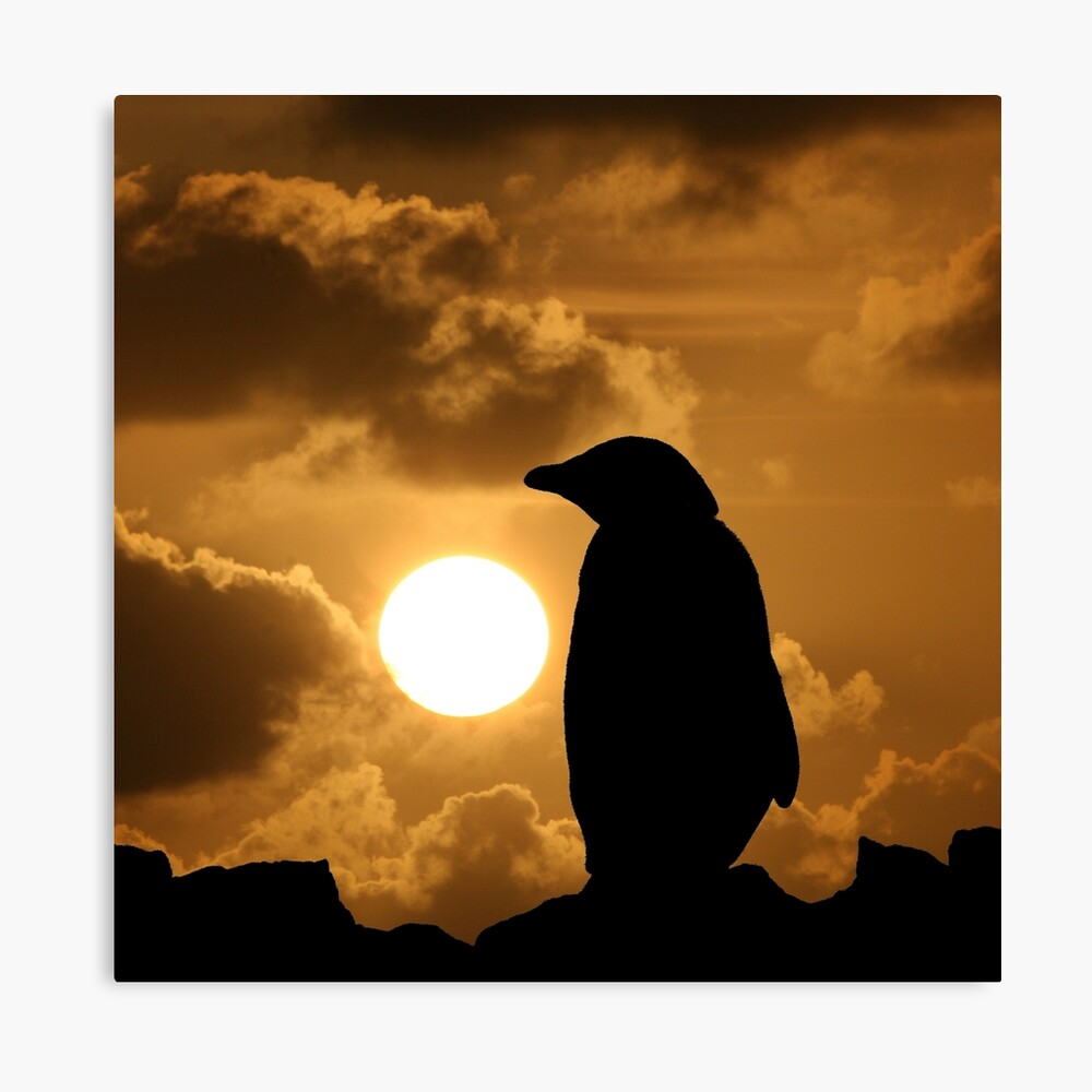 Penguin Silhouette Canvas Print