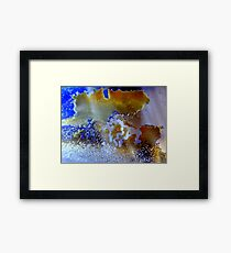 Mystery forms Framed Print