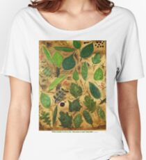 Wisconsin Leaves Women's Relaxed Fit T-Shirt