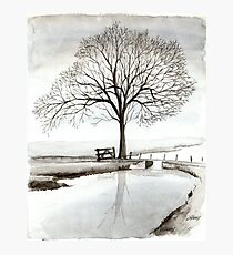 TRANQUIL BEAUTY - AQUAREL  Photographic Print