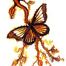 Reflections of Gold - Butterfly by Linda Callaghan