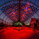 Luftwerk light show at the Garfield Park Conservatory  by Sven Brogren