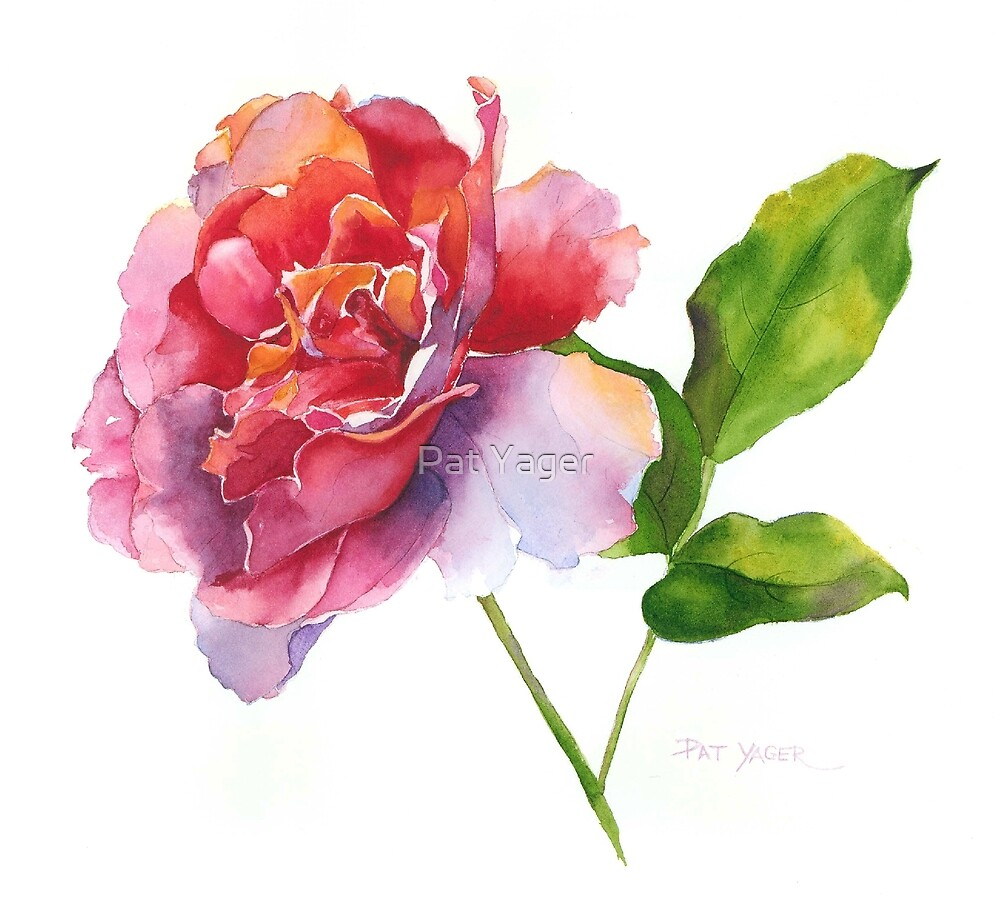 """Rose Watercolor II"" by Pat Yager 