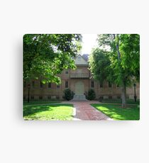 Wren Building Canvas Print