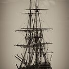 HMB Endeavour by Peter Ede
