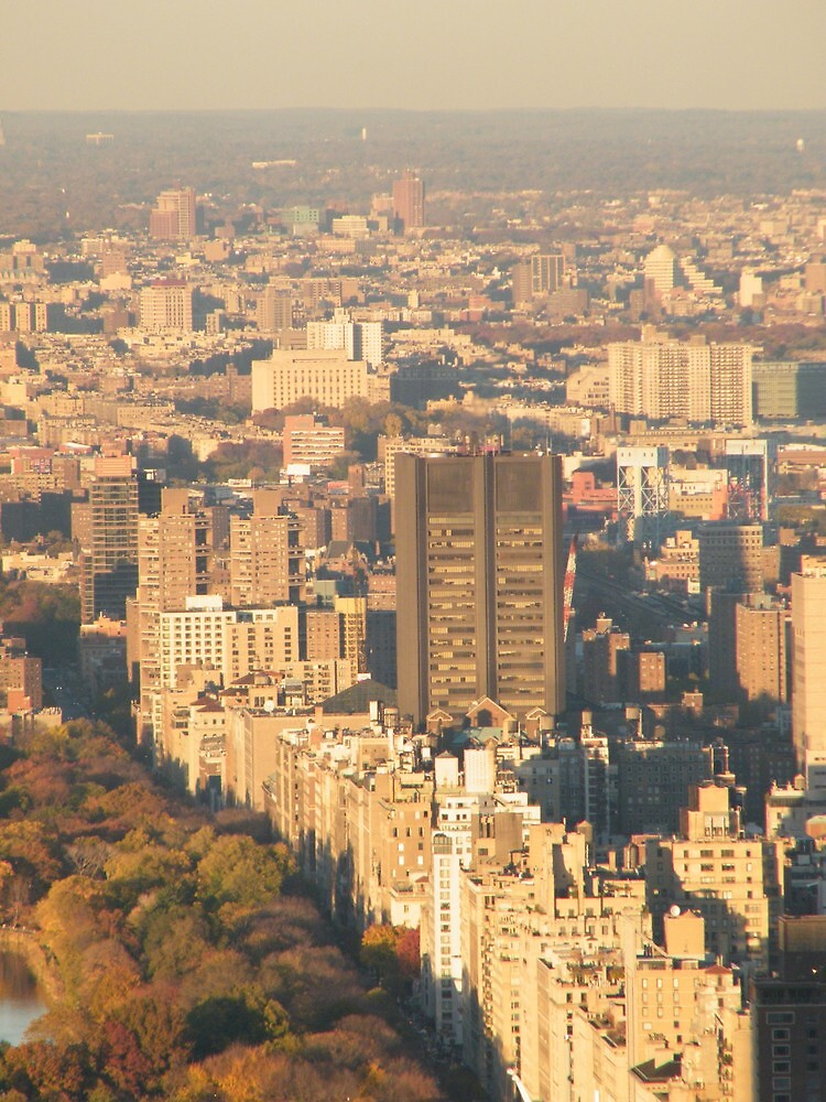 Central Park, Fifth Avenue View, As Seen from Top of the Rock Observation Deck, New York   by lenspiro