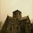 Carlisle Cathedral (The West Side) by Lou Wilson