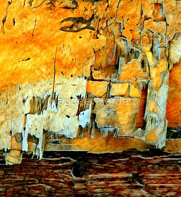Old wooden wall by Haydee  Yordan