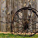 Wheel by vasu