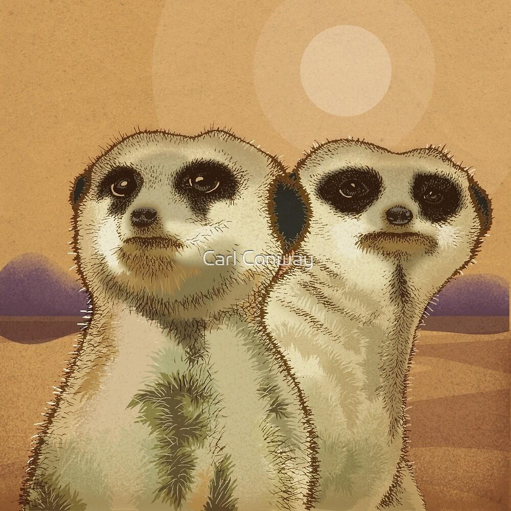 Meerkats by Carl Conway