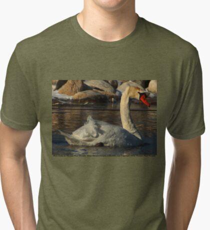 Mute Swan Tri-blend T-Shirt