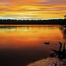 Colour of Narrabeen by Mark  Lucey