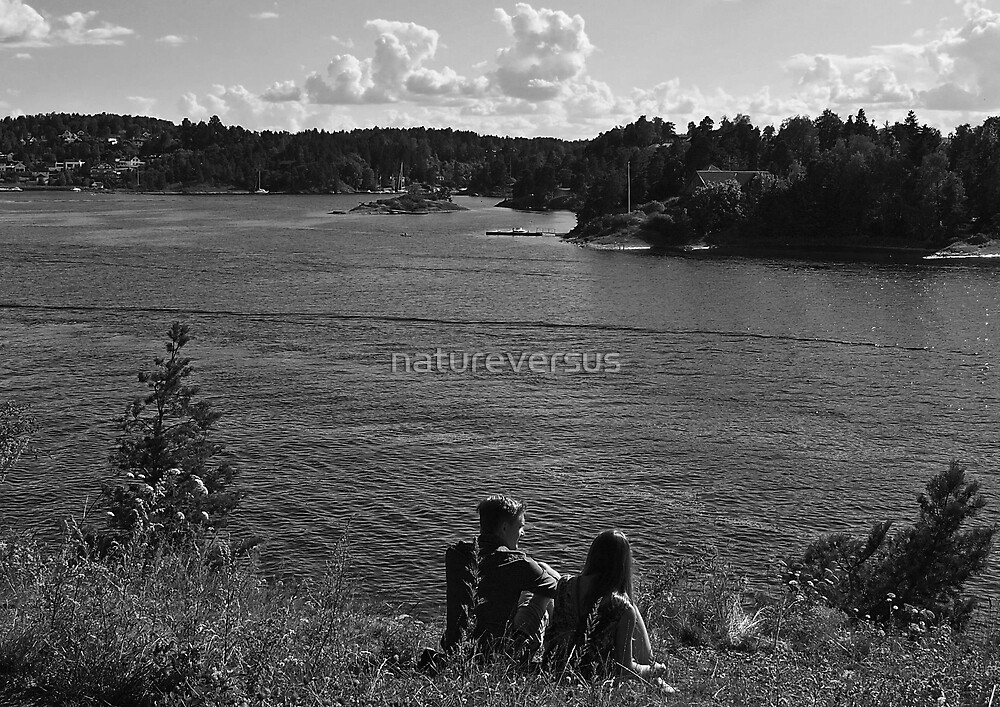 Romancing the Fjords by Deb Maidment