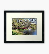 Beauty By The Pond Framed Print