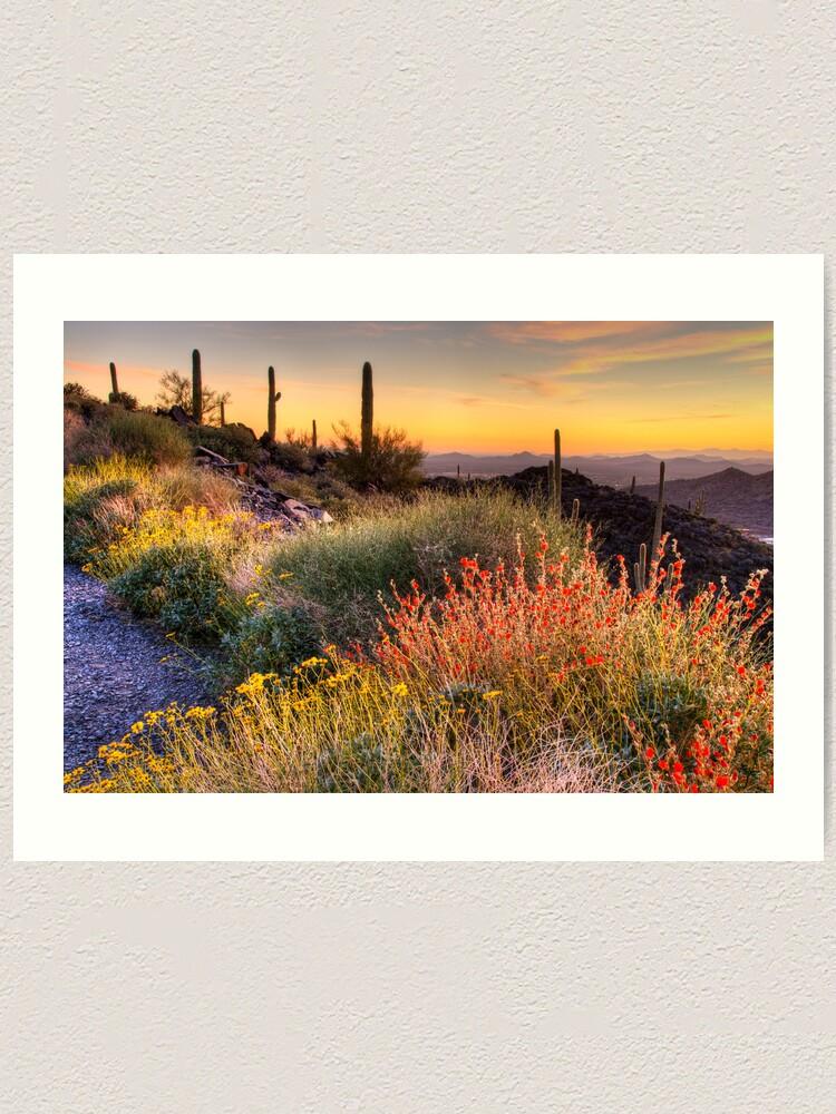 Alternate view of Desert Glow Art Print
