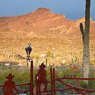Desert Ranch by Tracy Riddell