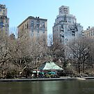 Winter in Central Park,New York by Patricia127