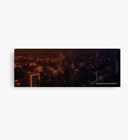 infinite metropolis 001 Canvas Print