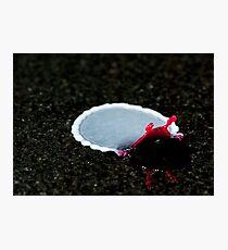 Flat slug... Photographic Print