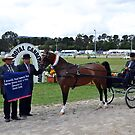 Supreme Harness Horse, 2012 Royal Canberra Show by Kate Howarth