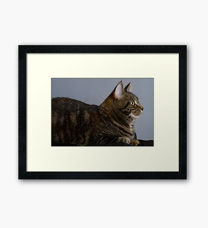 This is My Good Side Framed Print
