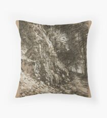Tiffany Falls. Throw Pillow