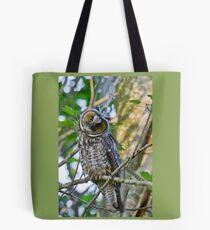 Curious Juvenile Long-eared Owl Tote Bag