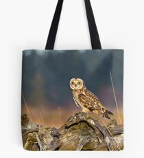 Short-eared Owl in Evening Light Tote Bag
