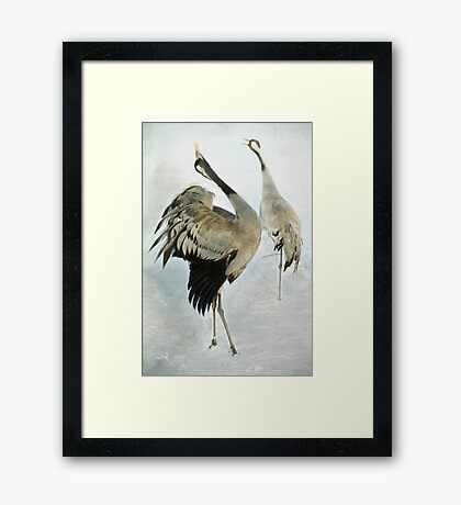 The Dance of the Cranes - 2 of 2 Framed Print