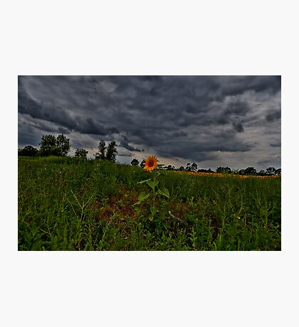 I Stand Alone Photographic Print