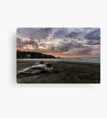 Ohope Sunset Canvas Print