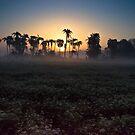 Sunrise 1 by Sagar Lahiri