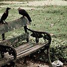 Three Crows by Sagar Lahiri