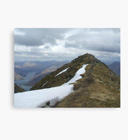 path just trodden Canvas Print