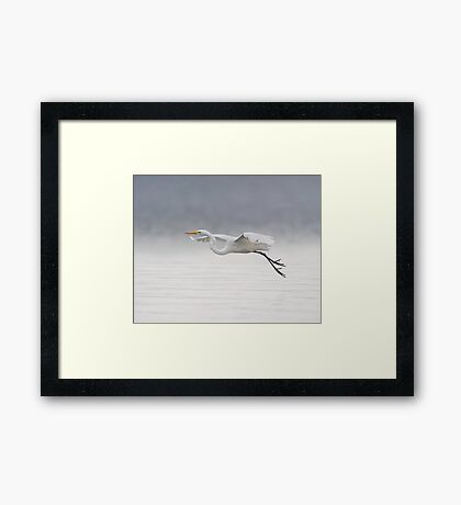 Foggy Flight Framed Print
