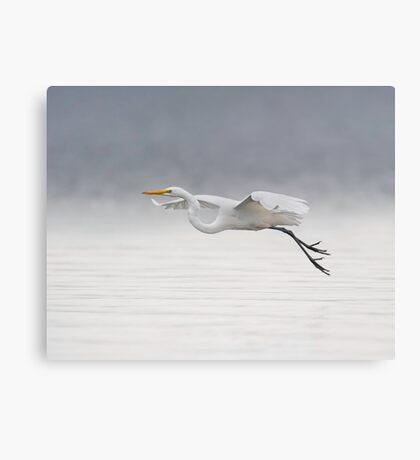 Foggy Flight Canvas Print