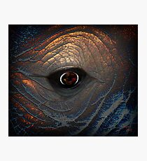 within my minds eye Photographic Print