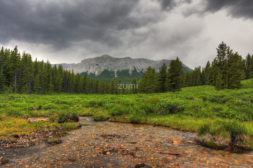 River, mountains and forest (HDR) by zumi