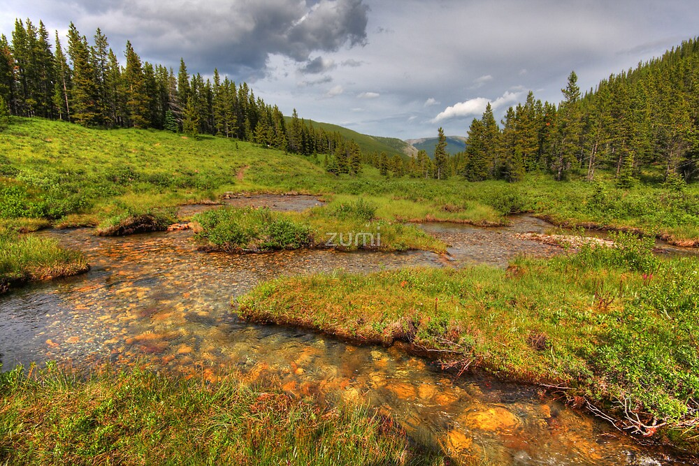 Snaking creek (HDR) by zumi