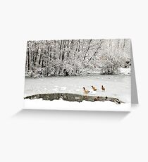 Christmas at the Duck Pond Greeting Card