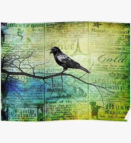 Portrait of a Raven Poster