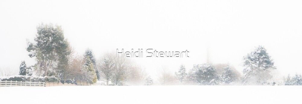 A Line of Trees in the Snow by Heidi Stewart