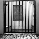 Window Jail by James2001