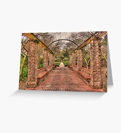 Walk The Path Greeting Card